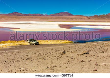Laguna in the desert in Bolivia - Stock Photo