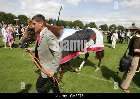 Horse Racing - Ritz Club July Festival - Third Day - Newmarket Racecourse - Stock Photo