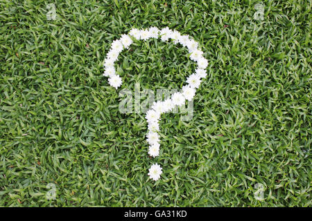 Question mark made from daisy flowers on green grass background, spring time. - Stock Photo