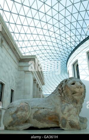 Statue of lion, Roman marble statue,  Great Courtyard, British Museum, London, England, UK, GB, Europe - Stock Photo