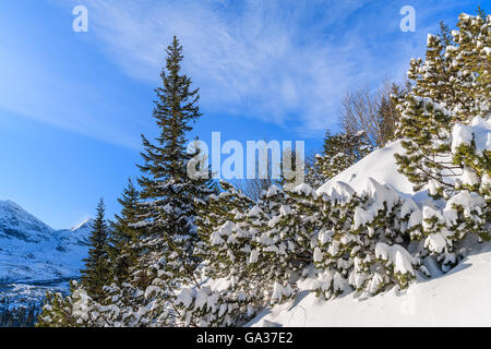Winter landscape in Gasienicowa valley, Tatra Mountains, Poland - Stock Photo