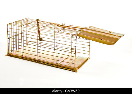 Old Mouse Trap Isolated on White Background