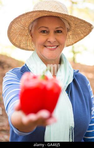 Portrait of happy gardener holding red bell pepper at garden - Stock Photo