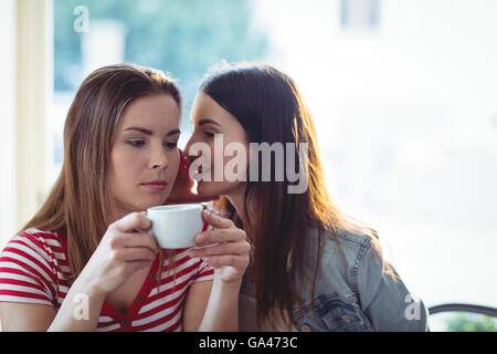 Female friends gossiping at cafe - Stock Photo