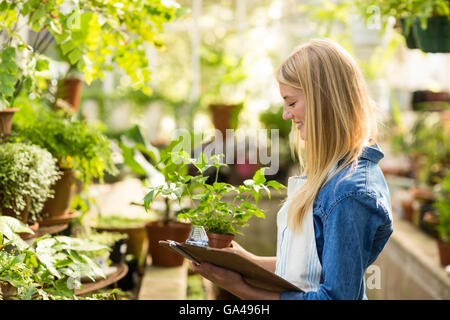 Young female gardener holding clipboard while examining plants - Stock Photo