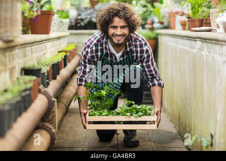 Male gardener keeping plants crate on floo - Stock Photo