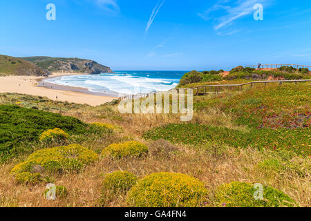 Spring flowers in foreground and view of Praia do Amado beach in distance, famous place for surfing, Algarve region, - Stock Photo