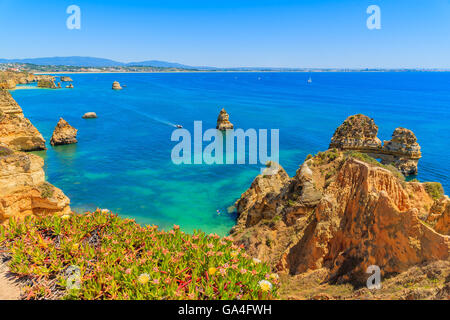 Flowers in spring time on cliff top and turquoise sea water at Ponta da Piedade, Algarve region, Portugal - Stock Photo