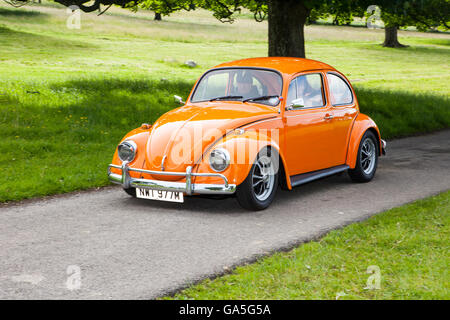 Volkswagen 1300cc Beetle at Leighton Hall Classic Car Rally, Carnforth, Lancashire, UK. 3rd July, 2016.  The annual - Stock Photo