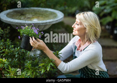 Female gardener holding potted flowers while working - Stock Photo