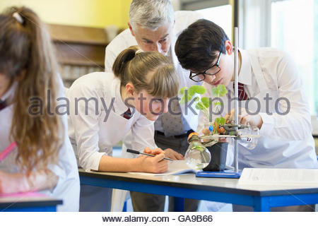 Teacher helping high school students conducting scientific experiment in biology class - Stock Photo