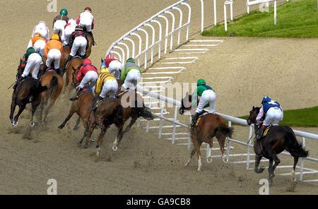 Horse Racing - Kempton Racecourse - Stock Photo