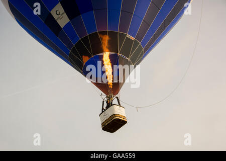 Durdham Down, Clifton, Bristol, UK. 5 August 2016 Mass ascent of Balloons to launch the annual Bristol International - Stock Photo