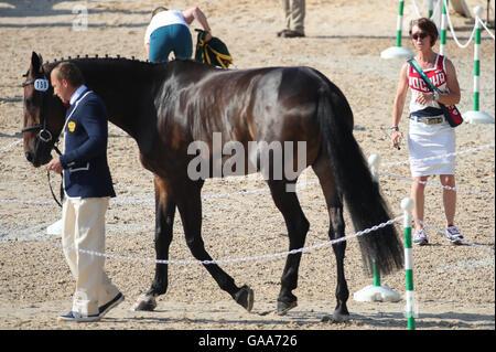 Deodoro, Rio de Janeiro, Brazil. 05th Aug, 2016. Rider Bettina Hoy (R) of Germany, personal coach of Aleksandr Markov - Stock Photo