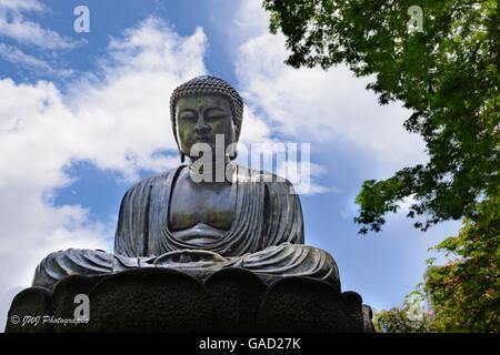 Meditating Buddha bronze statue in Foster Botanical Garden, Hawaii - Stock Photo