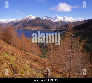 Autumn view from Mam Ratagan towards the five sisters of Kintail, loch Duich, N/W Highlands. - Stock Photo