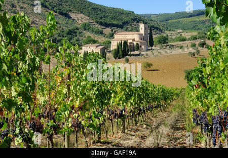 Sant Antimo 22 - Stock Photo