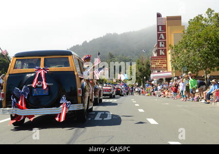 Car Drives Through Crowd South Carolina