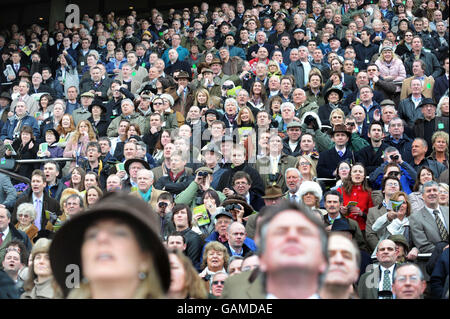 Horse Racing - Cheltenham Festival - Day Four - Cheltenham Racecourse - Stock Photo