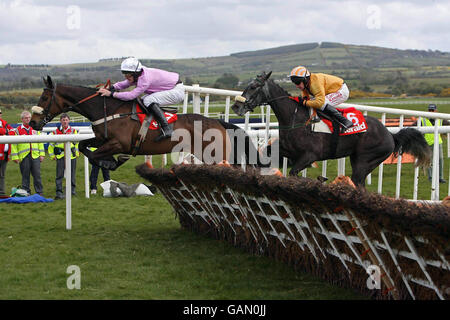 Horse Racing - 2008 National Hunt Festival - Day Two - Punchestown Racecourse - Stock Photo