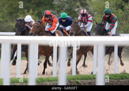 Horse racing invitation only evening great leighs stock photo horse racing invitation only evening great leighs stock photo stopboris Choice Image