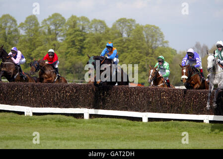 Horse Racing - Sandown - attheraces Gold Cup Celebration Meeting - Stock Photo