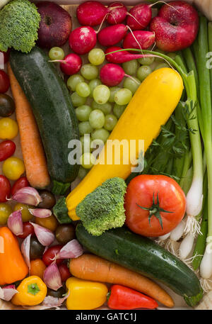 Yellow zucchini and various other vegetables and fruits as a natural still life for organic healthy and vegetarian - Stock Photo