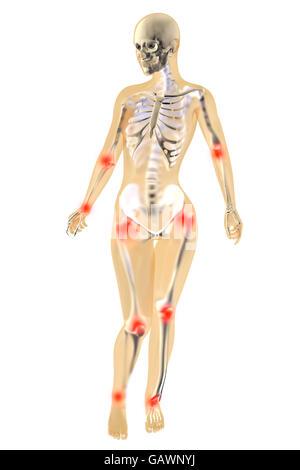 3d Rendered Illustration Knee Anatomy Stock Photo Royalty Free