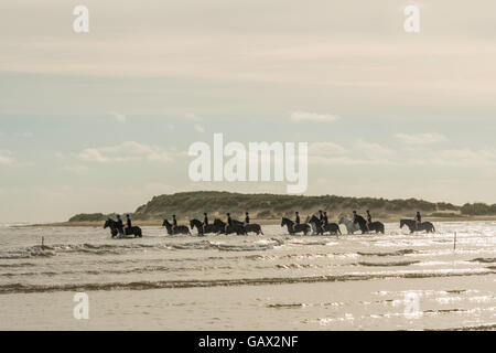 Holkham beach, Norfolk, UK. 6th July, 2016. The Household Cavalry Mounted Regiment has temporarily moved 150 horses - Stock Photo