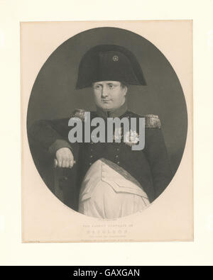 The latest portrait of Napoleon (on board the Bellerophon) ( b13075520-422197) - Stock Photo