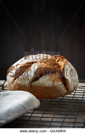 artisan baked bread on dark background - Stock Photo