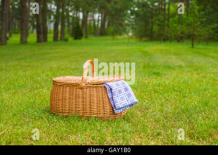 Picnic basket with blue white checkered napkin on grass. Summertime park lawn in the background - Stock Photo