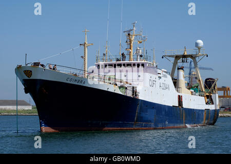 Bacalhoeiro, a type of portuguese fishing boat used to catch cod fish on the North Atlantic - Stock Photo