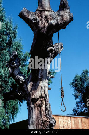 A rope noose with a large slipknot is suspended from an ancient oak that was called the Hangman's Tree in Old Town - Stock Photo
