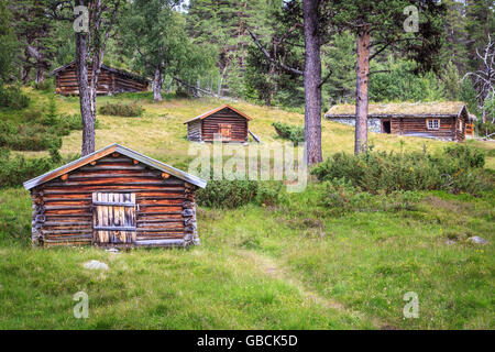 A cluster of log cabins, timber shielings, on a summer farm near Femunden, Hedmark, Norway. - Stock Photo