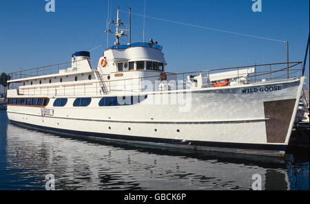 Famous Hollywood movie actor John Wayne once owned this luxury yacht, the Wild Goose, which currently is a for-hire - Stock Photo