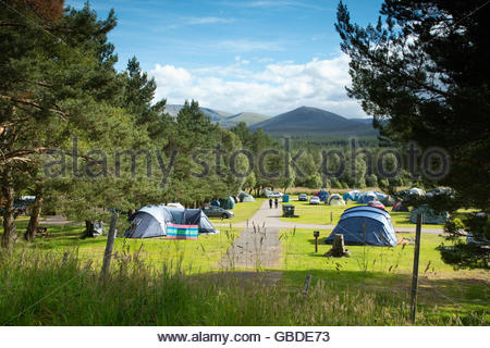 The busy campsite at Glenmore Forest Park near Aviemore, Highlands of Scotland. - Stock Photo