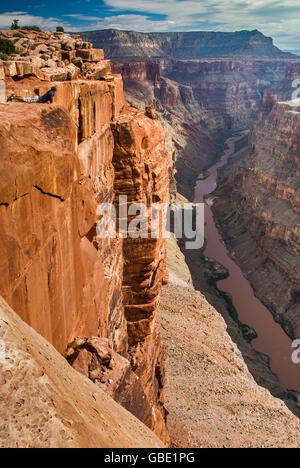 Young man looking at Grand Canyon from Toroweap Point at North Rim, 1000 meters above Colorado River, Arizona, USA - Stock Photo