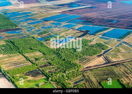 Goldenstedter Moor, Landkreis Vechta, Niedersachsen, Deutschland - Stock Photo