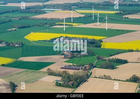 Windkraftraeder, Blick von Herrenholz Richtung Rechterfeld, Oldenburger Muensterland, Landkreis Vechta, Niedersachsen, - Stock Photo