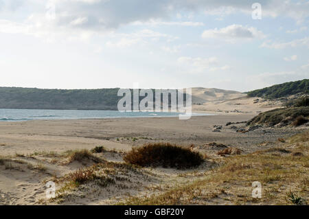 Playa de Bolonia, beach, Tarifa, Province of Cadiz, Costa de la Luz, Andalusia, Spain, Europe
