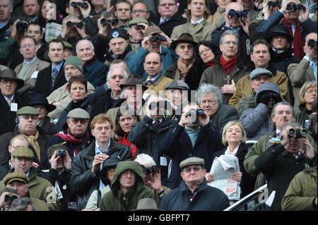 Horse Racing - Cheltenham Festival 2009 - Day One - Cheltenham Racecourse - Stock Photo
