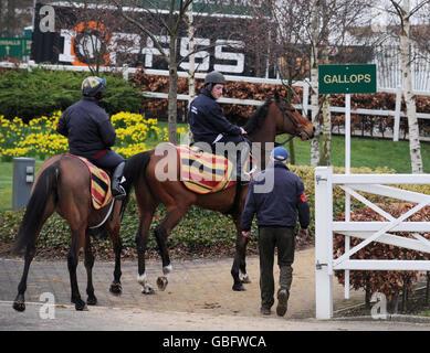 Horse Racing - Cheltenham Festival 2009 - Day Four - Cheltenham Racecourse - Stock Photo