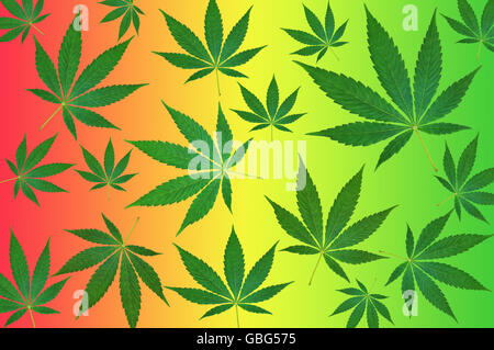 Green cannabis leafs on a colorful background pattern - Stock Photo