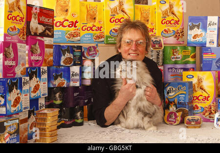 Cat woman's charity gift - Stock Photo