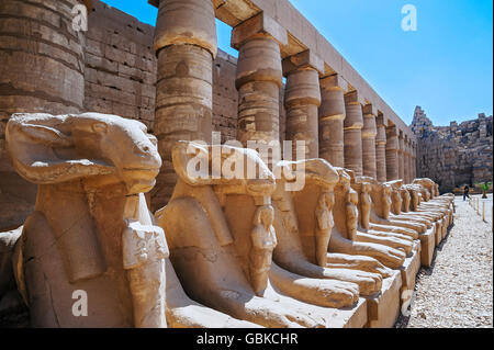Avenue of ram-headed sphinxes at Karnak Temple, Karnak, Luxor, Egypt - Stock Photo
