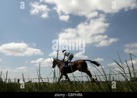 Horse Racing - Summer Fete Family Day - Bath Racecourse - Stock Photo