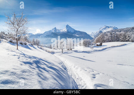 Idyllic winter wonderland scenery with trees and mountain tops in the Alps on a sunny day with blue sky and clouds - Stock Photo