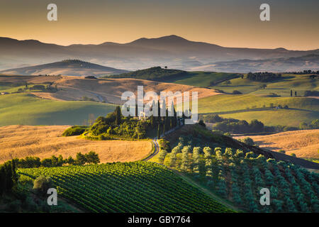 Scenic Tuscany landscape with rolling hills and valleys in golden morning light at sunrise in summer, Val d'Orcia, - Stock Photo