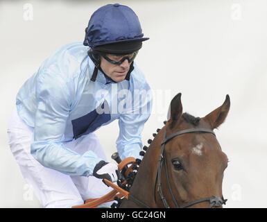 Horse Racing - Lingfield Racecourse - Stock Photo